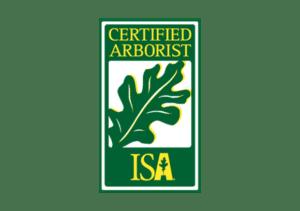 certified-arborists-mesa-az